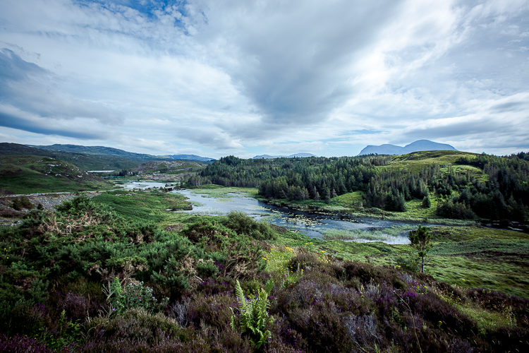 scotland2015-0098