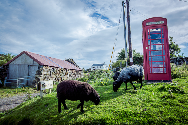 scotland2015-0127