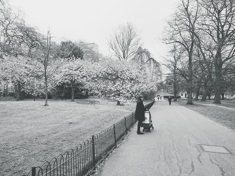 LONDON_0036