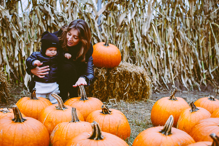pumpkin_0033